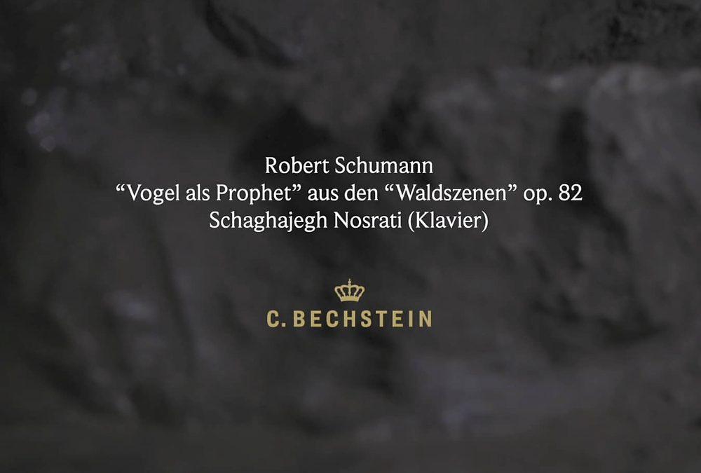 """Schumann: """"Vogel als Prophet"""" aus den """"Waldszenen"""" op. 82 Iberg"""